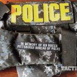 Vested Interest in K9s Police Dogs GWLE April 2015 vest