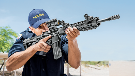 DPMS 3G2 Rifle GWLE June 2015 lead