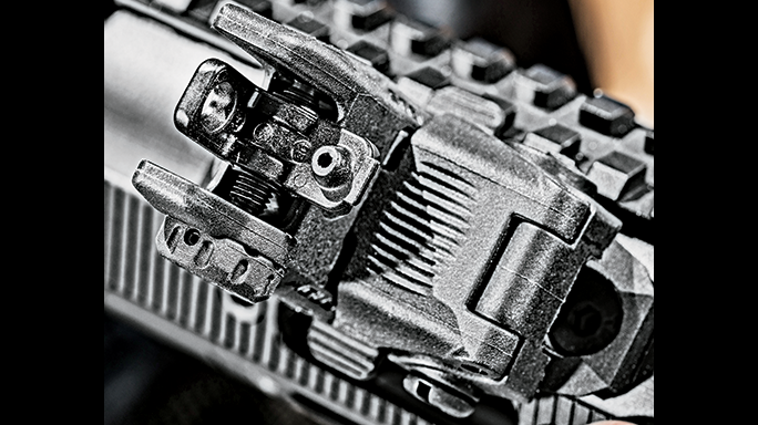 DPMS 3G2 Rifle GWLE June 2015 rear sight