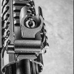 Del-Ton Evolution Rifle CBG 2016 front sights