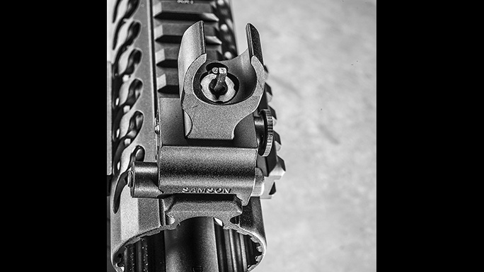 Del-Ton Evolution Rifle CBG 2016 front sights