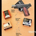 Springfield Armory Range Officer Compact 1911 target