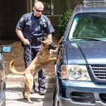 Marietta Police Department Tactical Weapons August 2015 K-9