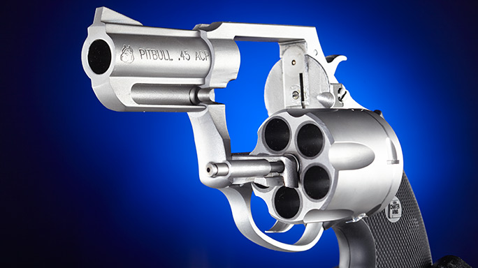 Charter Arms Pitbull .45 Revolver unloaded