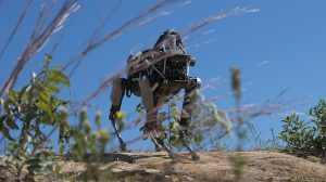 Marines Quadruped Prototype Robot Spot