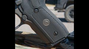 Sig Sauer Legion Series P229 video grip
