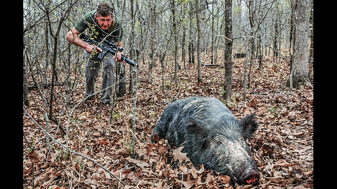 Wilson Combat Hog Hunting hunt