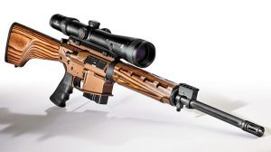 Windham weaponry wood .308 Hunter solo