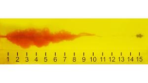 9mm roundup 2015 penetration