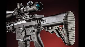Test Windham Weaponry R16SFST-308 Rifle stock