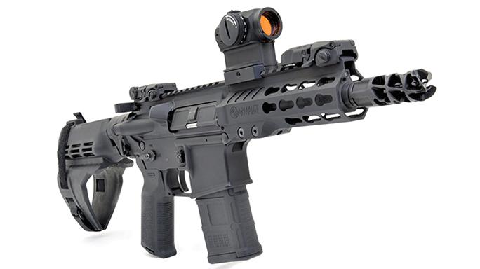 2015 roundup Armalite M15P6 5.56 NATO solo
