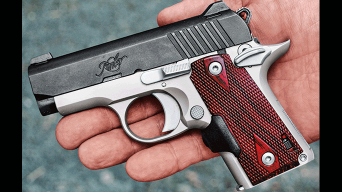 Kimber Micro Crimson Carry hand