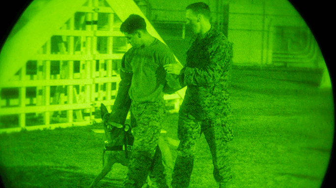 Marine K-9 Units Night Training