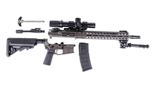 AXTS Weapons Systems MI-T556 Rifle Ballistic stripped
