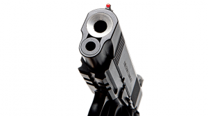 Wilson Combat 9mm Protector Professional Pistol front
