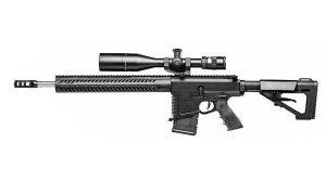 ar rifles DoubleStar STAR10-B