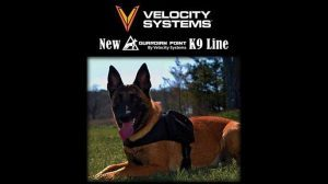 velocity systems k9 gear