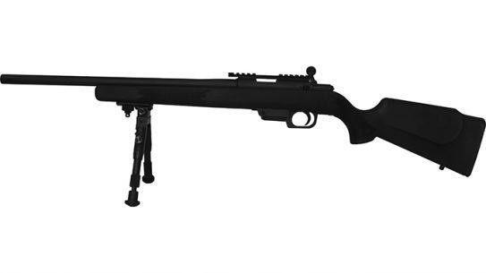 rock island armory M22 TCM Tactical Rifle