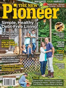 New Pioneer 22 cover