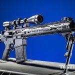 Black Dawn armory BDR-10 dmr