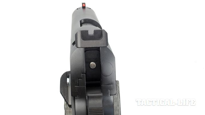 The Ed Brown Special Forces pistol sights