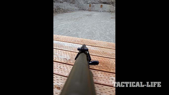 Definitive Arms DAKM-4150 rifle sights