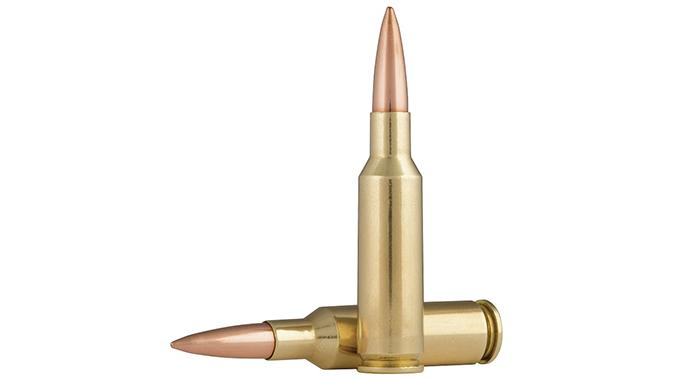 savage msr 15 valkyrie 224 valkyrie ammo