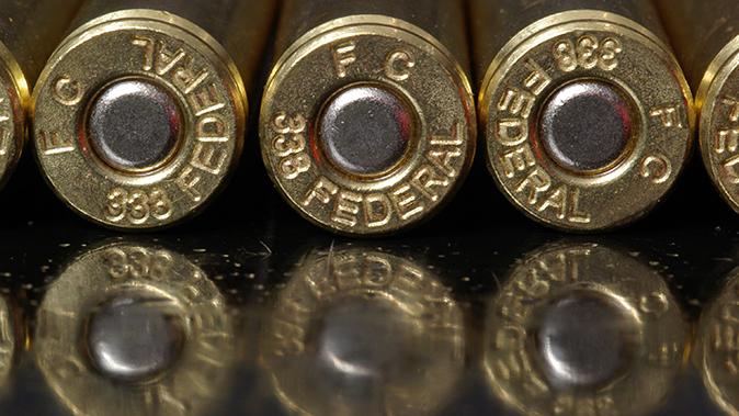 .338 Federal ar-10 ammo