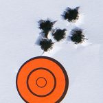savage model 10 grs rifle target best group