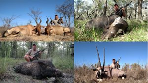 bill wilson ar hunting