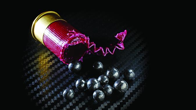 buckshot pellets