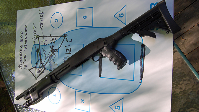 buckshot Mossberg 500 shotgun