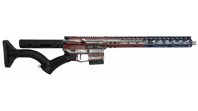 Dark Storm DS-15 Signature Series freedom flag rifle featureless right profile