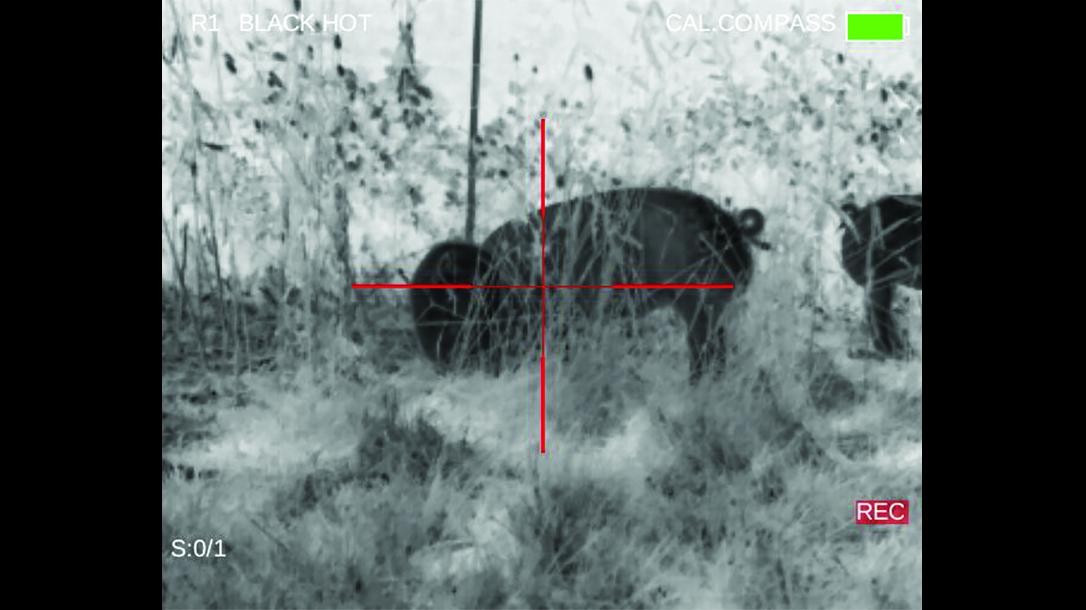 FLIR ThermoSight Pro imaging