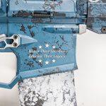 rise armament Patriot Rifle controls