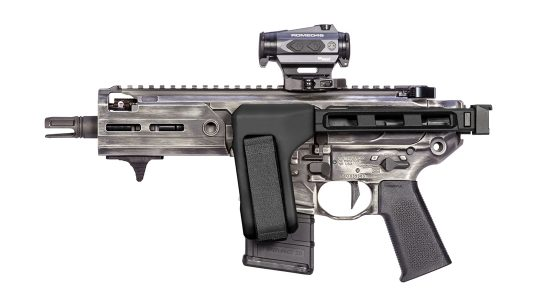 SB Tactical FS1913 brace folded