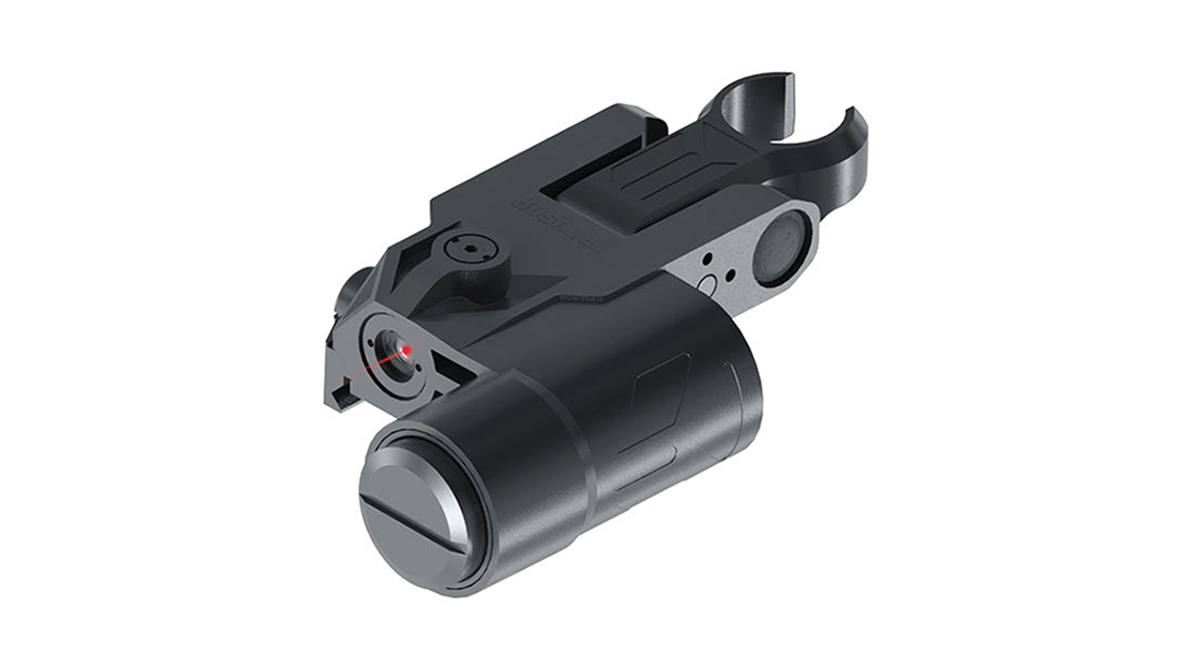 Backup Iron Sights, AR Rifle, Bushnell Chase Laser Sight