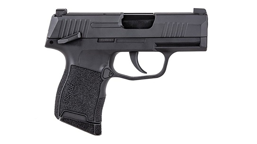 P365 BB Pistol