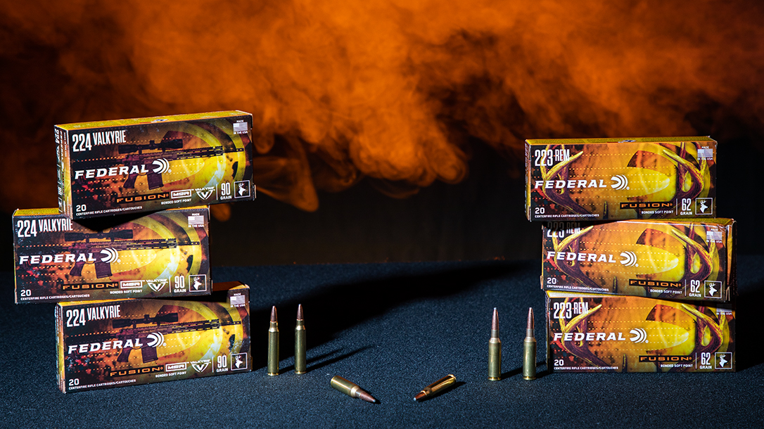 In a cartridge test, we compared 224 Valkyrie vs 223 Remington.