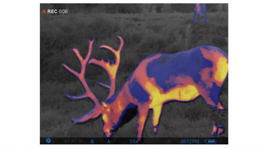 Thermal imaging on the Pulsar Trionyx Multispectral Binoculars.